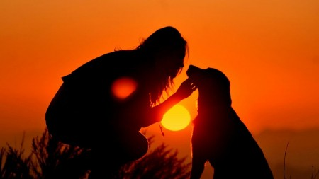 girl_dog_light_shadow_silhouette_54499_1920x1080-450x253